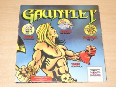 Gauntlet by Mindscape