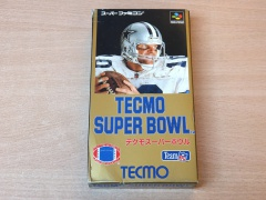 Super Bowl by Tecmo